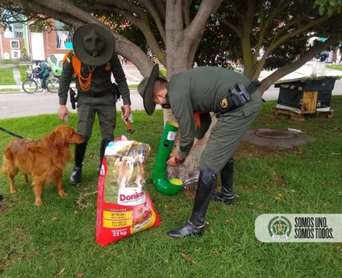 En Soacha, Policías realizaron jornada de alimentación a caninos en condición de abandono.